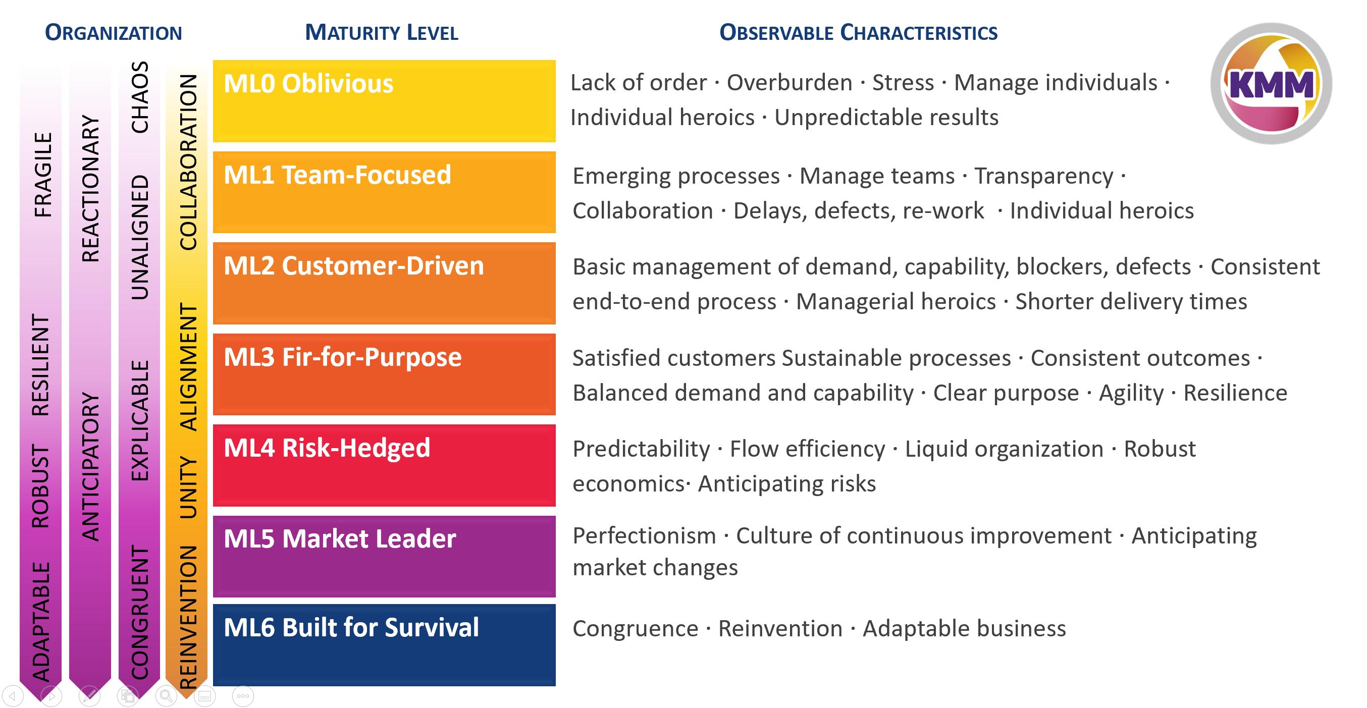characteristics of Maturity Levels