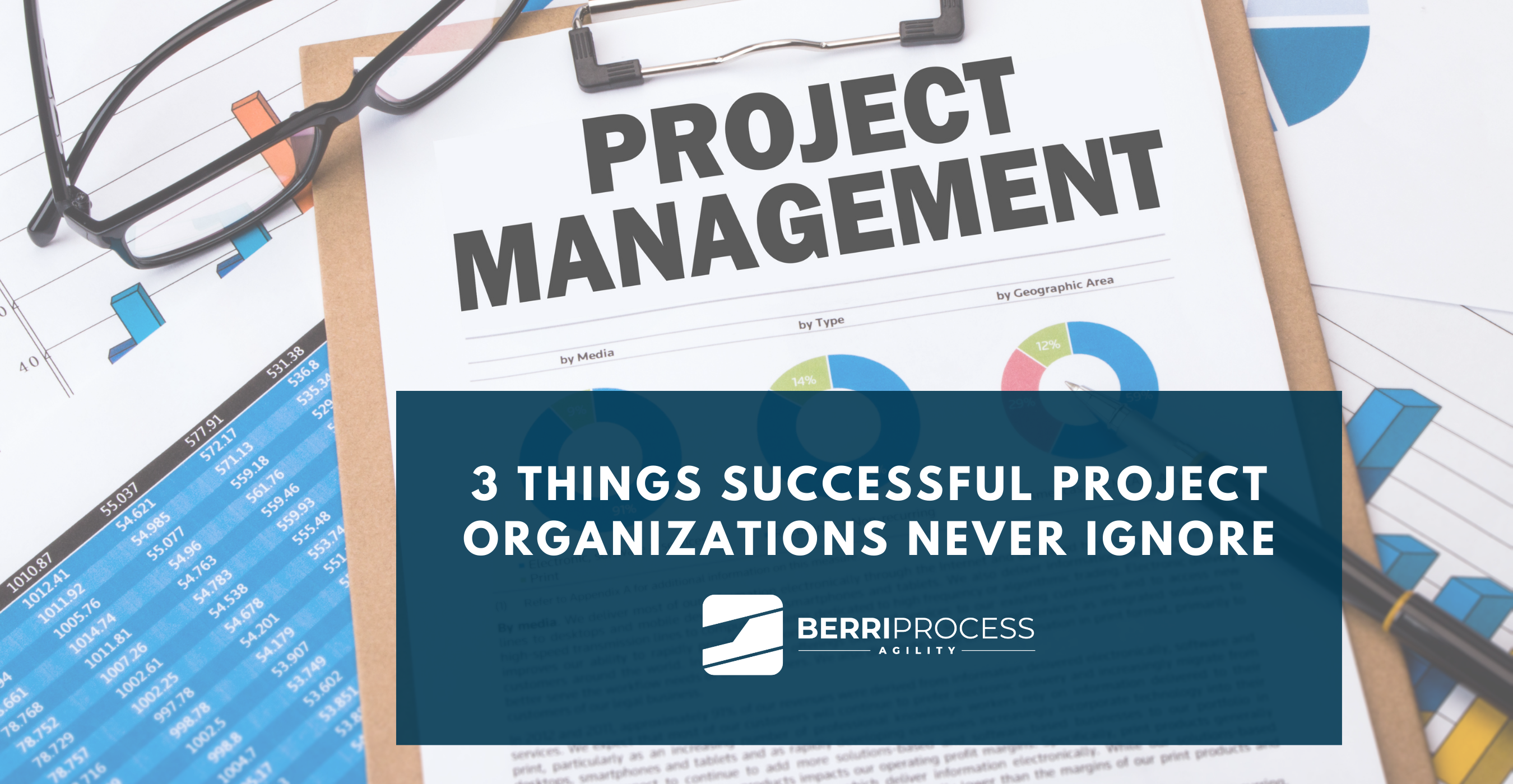 Image 3 3 THINGS SUCCESSFUL PROJECT ORGANIZATIONS NEVER IGNORE